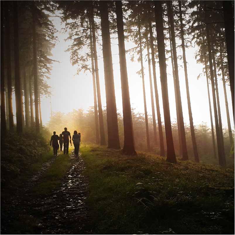 teambuilding i skov